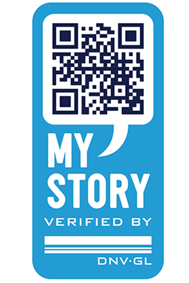 My Story logo blue